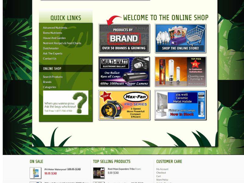 Old Homepage - Progressive Growth