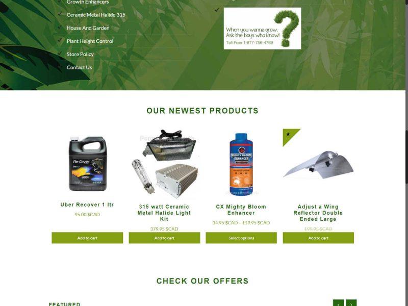 New Homepage - Progressive Growth